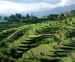Kathmandu Vacation